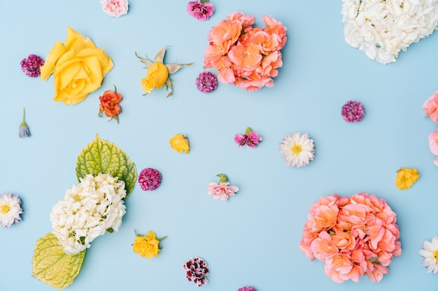 Composition of mixed flowers on blue background. top view, copy space.
