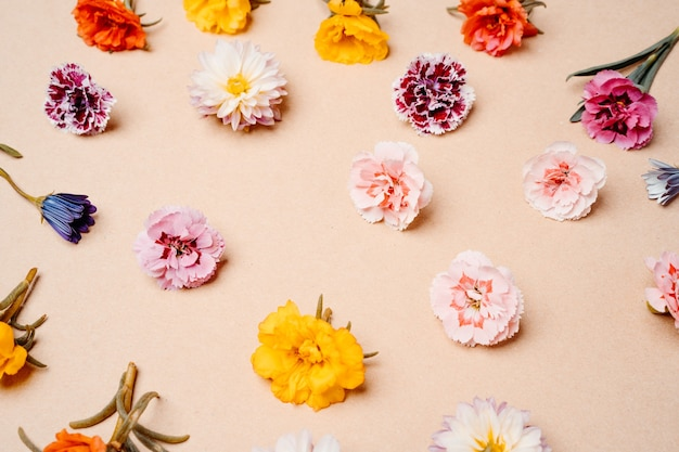 Composition of mixed flowers on pastel background. top view, copy space.