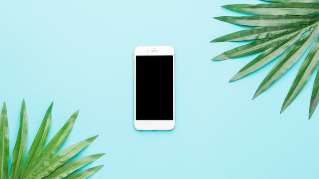 Composition of mobile phone and green leaves