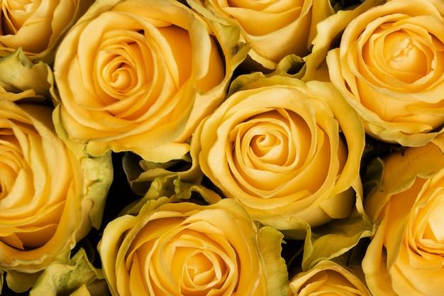 아름다운 꽃 배경의 구성