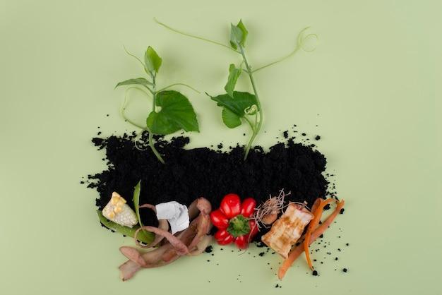 Состав компоста из тухлых продуктов