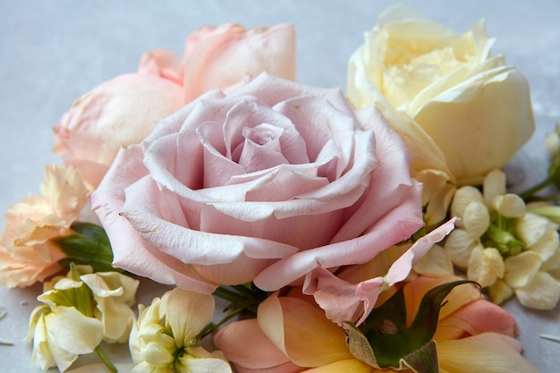 회색 배경에 표현된 다양한 색상의 꽃 장미의 구성. 발렌타인 데이, 결혼식 또는 3월 8일 장미 클로즈업.