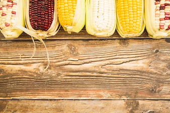 Composition of multicolored corn on cob