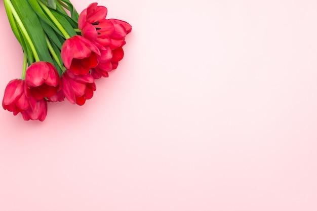 ピンクの背景に赤いチューリップの組成。フラット横たわっていた、トップビュー、コピースペース。女性の日、母の日、春のコンセプト。花飾り
