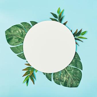 夏の花の構成。丸い白紙、パステル ブルーの背景に緑の手のひら。フラット レイアウト、トップ ビュー、コピー スペース、正方形
