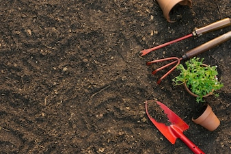 Composition of tools for gardening on ground