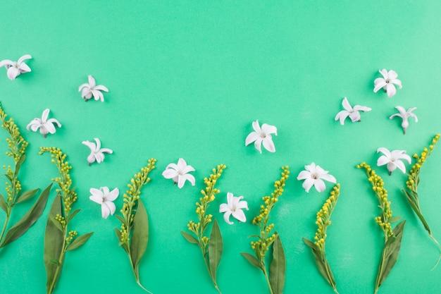 녹색 줄기 근처에 흰 꽃의 구성
