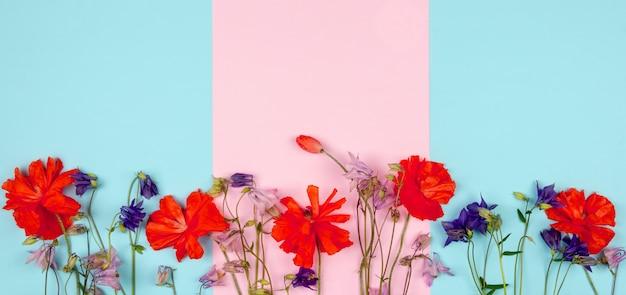야생 꽃과 분홍색 파란색 배경에 빨간 양 귀 비의 구성