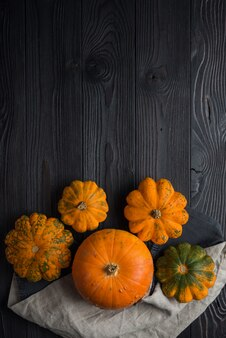 Composition of pumpkin on a wooden wall