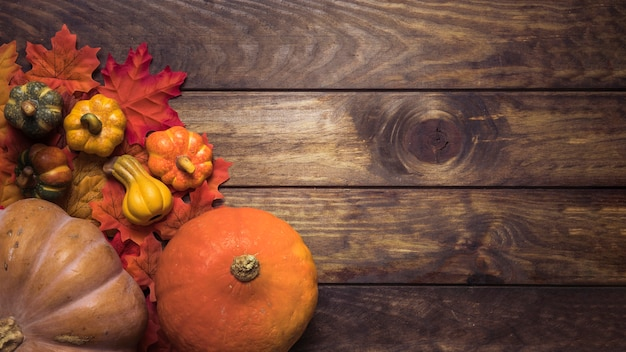 Composition of ripe pumpkins and autumn leaves