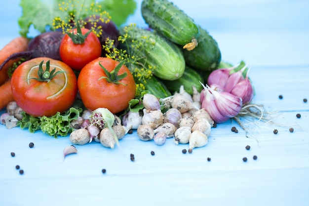 Composition of the russian traditional vegetables. top view.