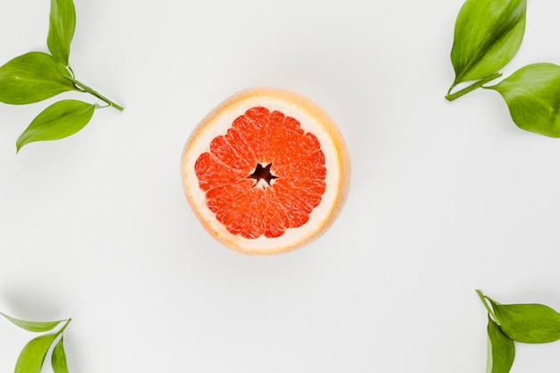Composition of slice of grapefruit and green leaves