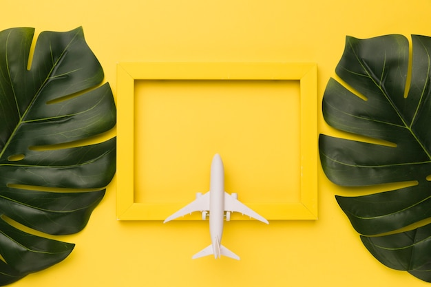 Composition of small airplane on yellow frame and plant leaves