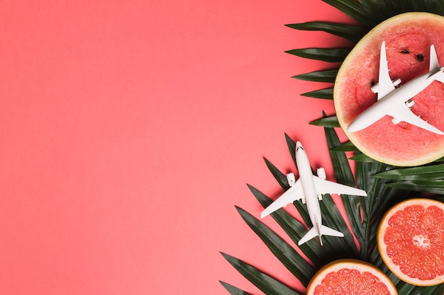 Composition of small airplanes plant leaves grapefruit and watermelon
