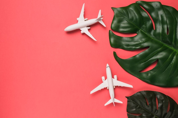 Composition of small jets and monstera leaves