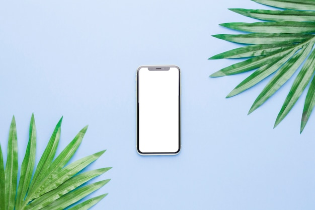 Composition of smartphone with white screen and plant leaves