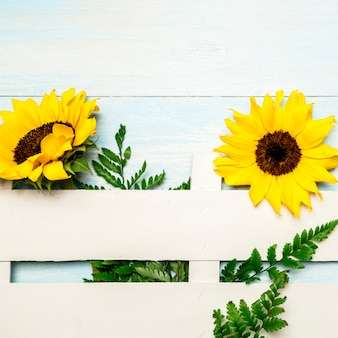 Composition of sunflowers and decorative fence on light blue surface