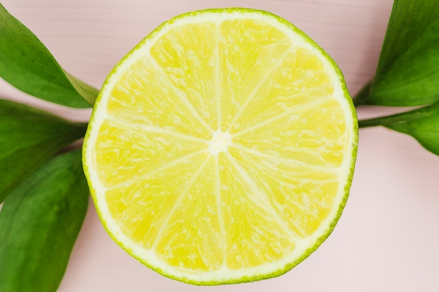 Composition of tasty lime near foliage