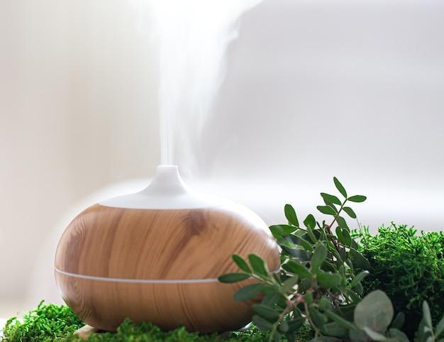 空気加湿器と装飾的な緑の構成がクローズアップ。