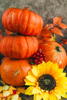 Composition with autumnal ripe pumpkins