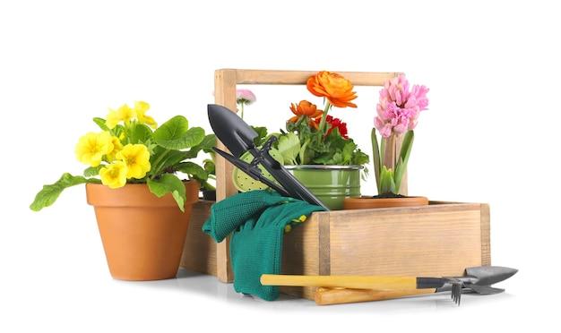 Композиция с красивыми растениями и садовыми инструментами