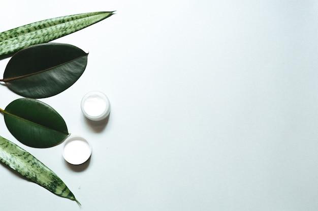 。ボディケア製品、ウィスプ、白い背景、上面、フラットレイアウトの緑の葉の組成物。