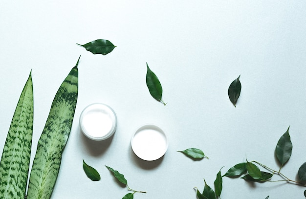 . composition with body care products, wisp and green leaf on white background, top view,  flat lay.