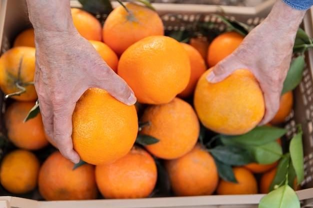오렌지 가득한 상자 구성