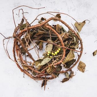 枝と乾燥葉の組成