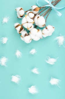 Composition with cotton flowers on bright surface