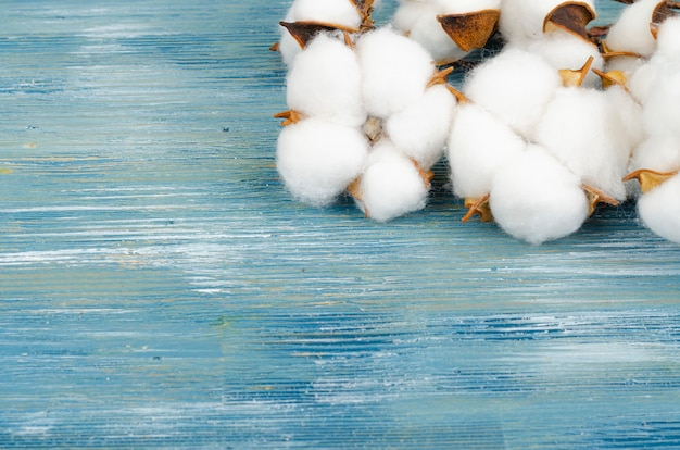 明るい表面に綿の花を使った構成