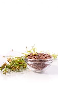 Композиция с семенами льна и растениями на белом