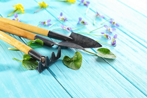 Composition with gardening tools on wooden