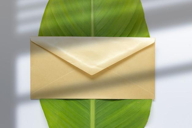 Композиция с золотым конвертом и зеленым листом с наложением тени от окна.