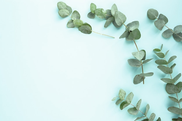 Composizione con foglie verdi