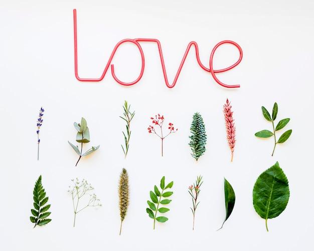 Композиция с листьями и любовью