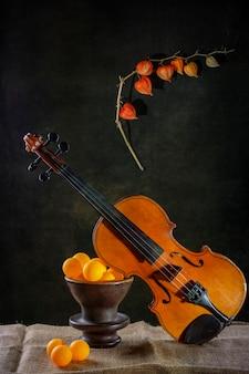 Композиция со скрипкой, апельсинами на коричневой чаше и ветке физалиса