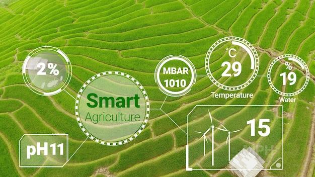 컴퓨터 원조 농장 성장 개념.