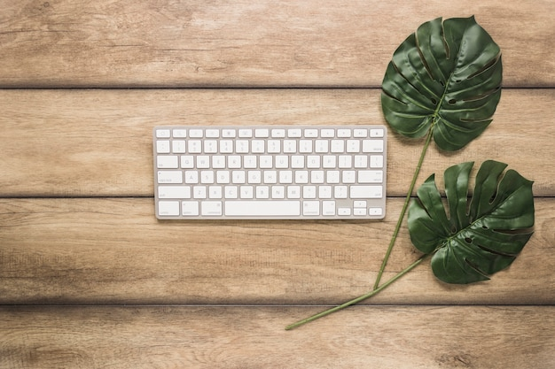Computer keyboard with green leafs