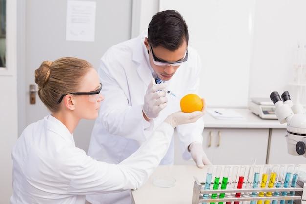 オレンジを注入する科学者の集中