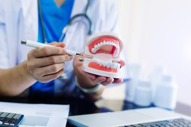 Концентрированный дантист сидит за столом с моделью зуба образцов челюсти и работает с планшетом и ноутбуком в профессиональной стоматологической клинике.