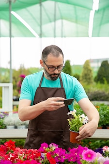 鍋でペチュニアの写真を撮る集中庭師