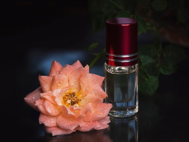 Concentrated perfume in a mini bottle with pink scented tea rose on black