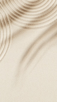 Concentration and spirituality in japanese zen garden  lines drawing in sand and shadows of palm