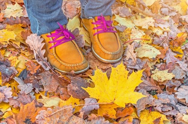 コンセプト-秋が来ています。紅葉、カエデの葉に明るい靴ひもが付いた赤黄色のブーツ。