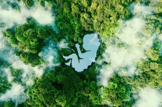 Концепт, изображающий самообновляющиеся процессы природы и новую жизнь в целом в виде озера в форме зародыша посреди девственного леса. 3d-рендеринг.
