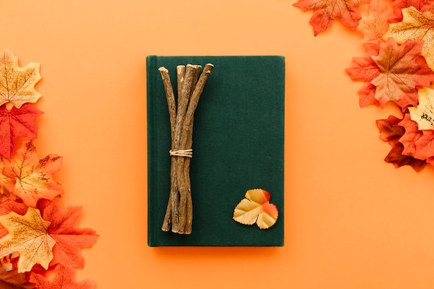 Concept flat lay in autumn leaves frame