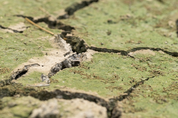 Concept of love the world, love the environment ground arid drought