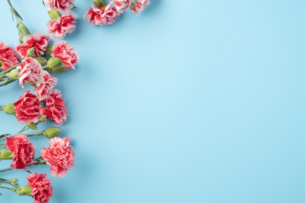 Concept of mother's day holiday greeting gift design with carnation bouquet on bright blue table surface Premium Photo