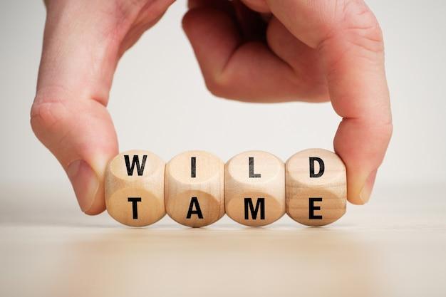 反意語の概念は、木製のブロックで野生で飼いならされています。